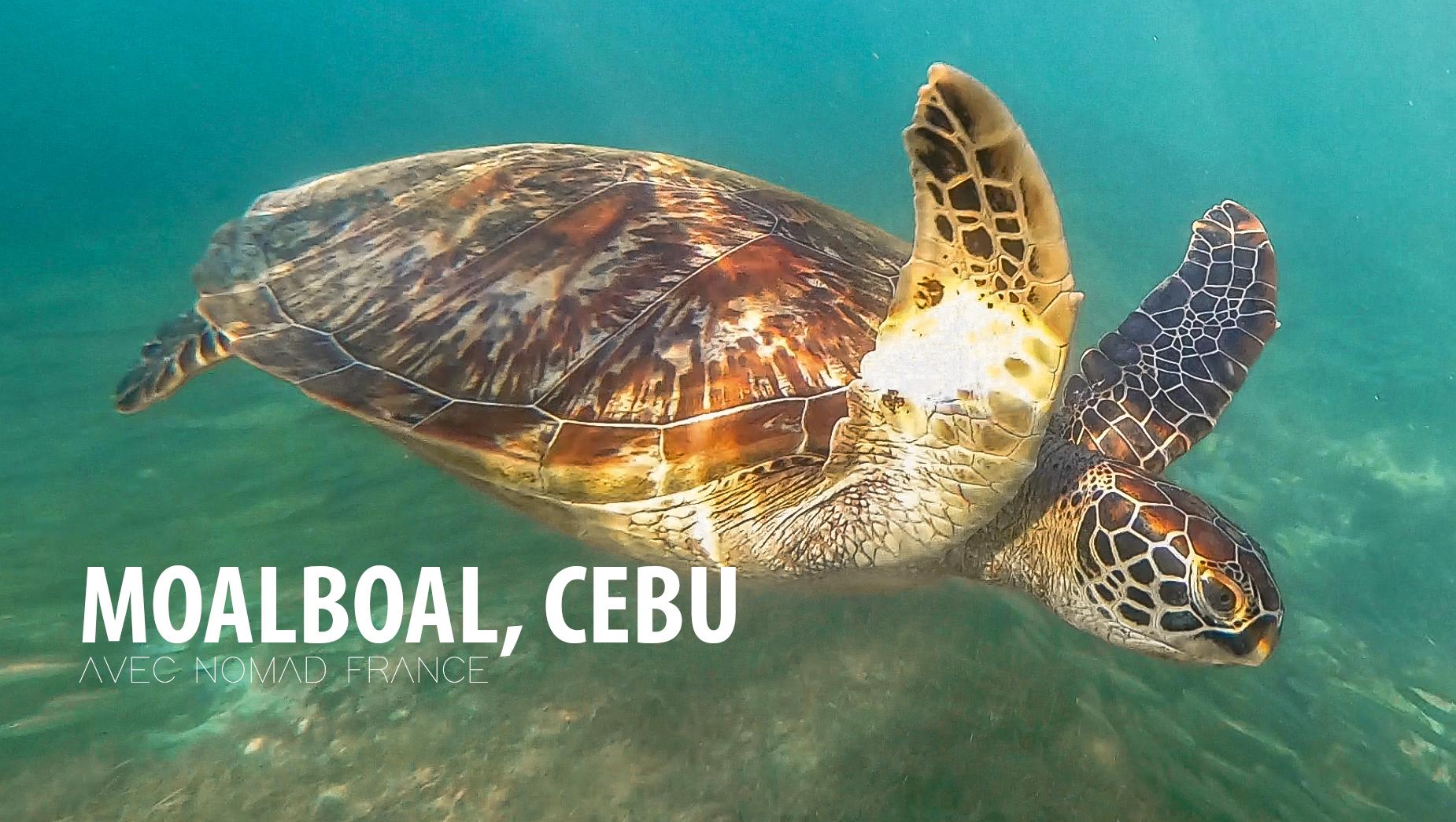 Moalboal Village De Pêcheur De Cebu Nomad France